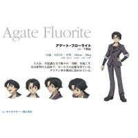 Agate Fluorite