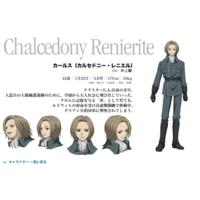 Image of Chalcedony Renierite