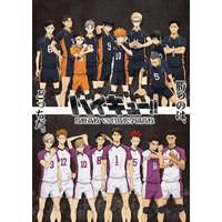 Image of Haikyu!! Karasuno High School VS Shiratorizawa Academy