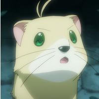 Yuuno Scrya (Ferret)