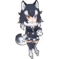 Image of Gray Wolf