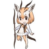 Image of Thomson's Gazelle