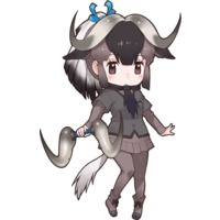 Black Wildebeest