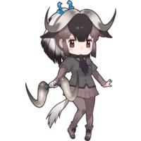 Image of Black Wildebeest