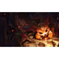 Profile Picture for Gnar