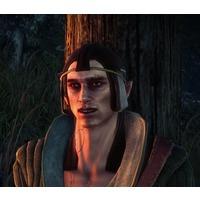 Image of Elven prisoner