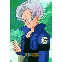 Image of Future Trunks Brief