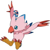 Image of Biyomon