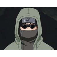 Image of Shino Aburame