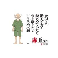 Akadama sensei