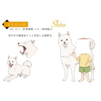 Image of Shiro