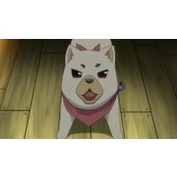 Image of Homura