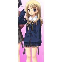 Image of Shiiko