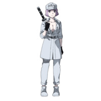 Image of White Blood Cell (8787)