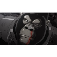 Quotes from Armored Gorilla