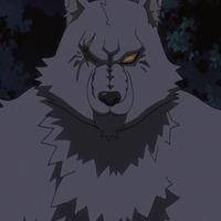 Image of Sarome (werewolf form)