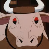 Jumbo Cow