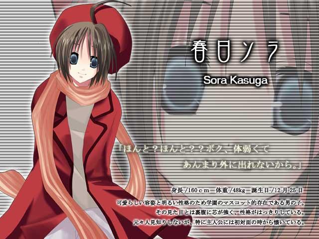 https://ami.animecharactersdatabase.com/./images/lasselnoel/Sora.jpg