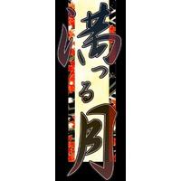 Mitsuru Tsuki Image