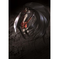 Image of Akame ga Kill!