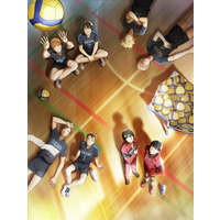Image of 2.43: Seiin High School Boys Volleyball Team