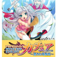 Princess Knight Catue Image