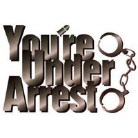 You're Under Arrest! (Series) Image