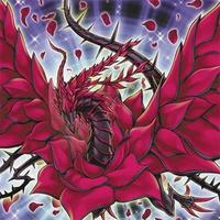 Image of Black Rose Dragon