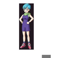 Image of Bulma Briefs
