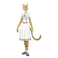 Image of Shiira