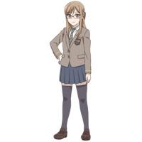 Image of Shibusawa Shibumi
