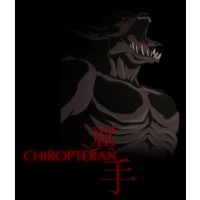 Image of Chiropteran