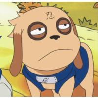 Image of Bisuke