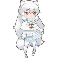 Image of Arctic Fox