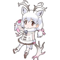 Profile Picture for White Reindeer