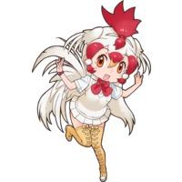 Image of Chicken