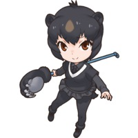 Image of Japanese Black Bear
