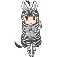 Image of Plains Zebra