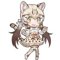 Image of Geoffroy's Cat