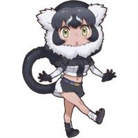 Image of Black-And-White Ruffed Lemur