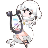Image of Harp Seal