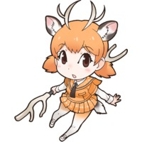 Profile Picture for Sika Deer