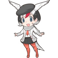 Profile Picture for Arctic Tern