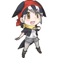 Image of Acorn Woodpecker