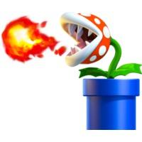 Image of Fire Piranha Plant