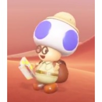 Image of Hint Toad