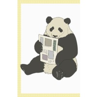 Image of Full-time Panda