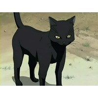Image of Yoruichi Shihouin (cat form)