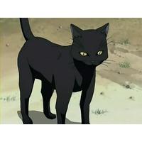 Yoruichi Shihouin (cat form)