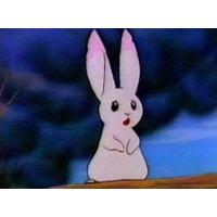 Image of Little Bun
